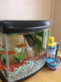 Fish Tank with 2 Fishes