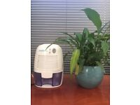 Mini dehumidifier by AirPro, £5, L17