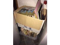 300 mixed vinyl lp records