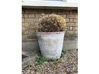 Round Terracotta Pots