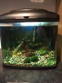 Fish pod 60 litre