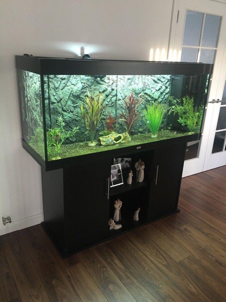Favorit Juwel rio 450 aquarium | in Buckie, Moray | Gumtree RF91