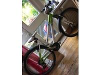 Green and white Raleigh bike