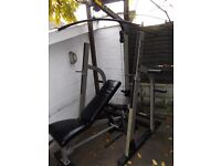 NAUTILUS olympic squat arck with high / low pulley, incline decline bench