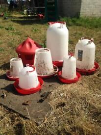 Poultry feeders and waters