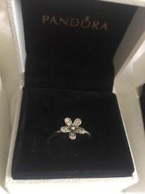 Pandora rings size 52. As new hardly worn amd comes with orginal box