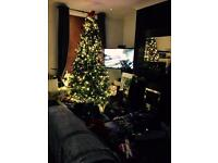 12ft pre lit Christmas Tree