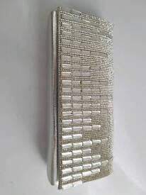 Silver shiny purse