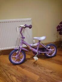 Purple Disney Fairies Bike