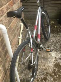 Ladies Carreras Vulcan 21 speed mountain bike