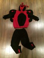 Costume d'Haloween | Coccinelle