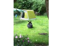 EGLU Go rabbit house and 2 metre run.Lime green about 3-4 yrs old, great condition.