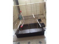 cage for small parrot or cock a tiel