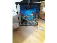 fish tank with pump and filter