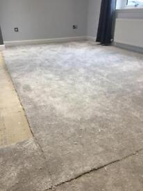 Silver/grey thick carpet + foam underlay