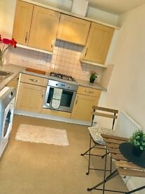 Short Term Let -2 or 3 months - beautiful & large 1 bedroom flat - E1