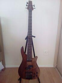 Bass guitar 5 string