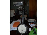 For Sale, circa 1900 5 string Zither Banjo