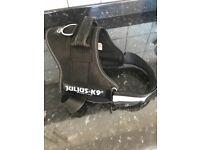 Julius k9 size 0 harness