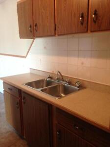 REDUCED!!! Large 3 Bedroom Suite with Walk In Closet
