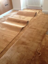 Carpet Off-Cuts - Copper Coloured