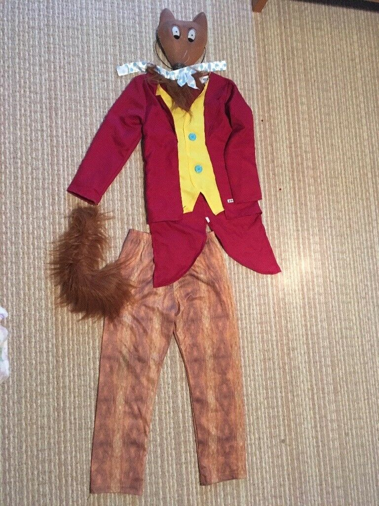 World Book Day Fancy Dress  Fantastic Mr Fox, Roald Dahl