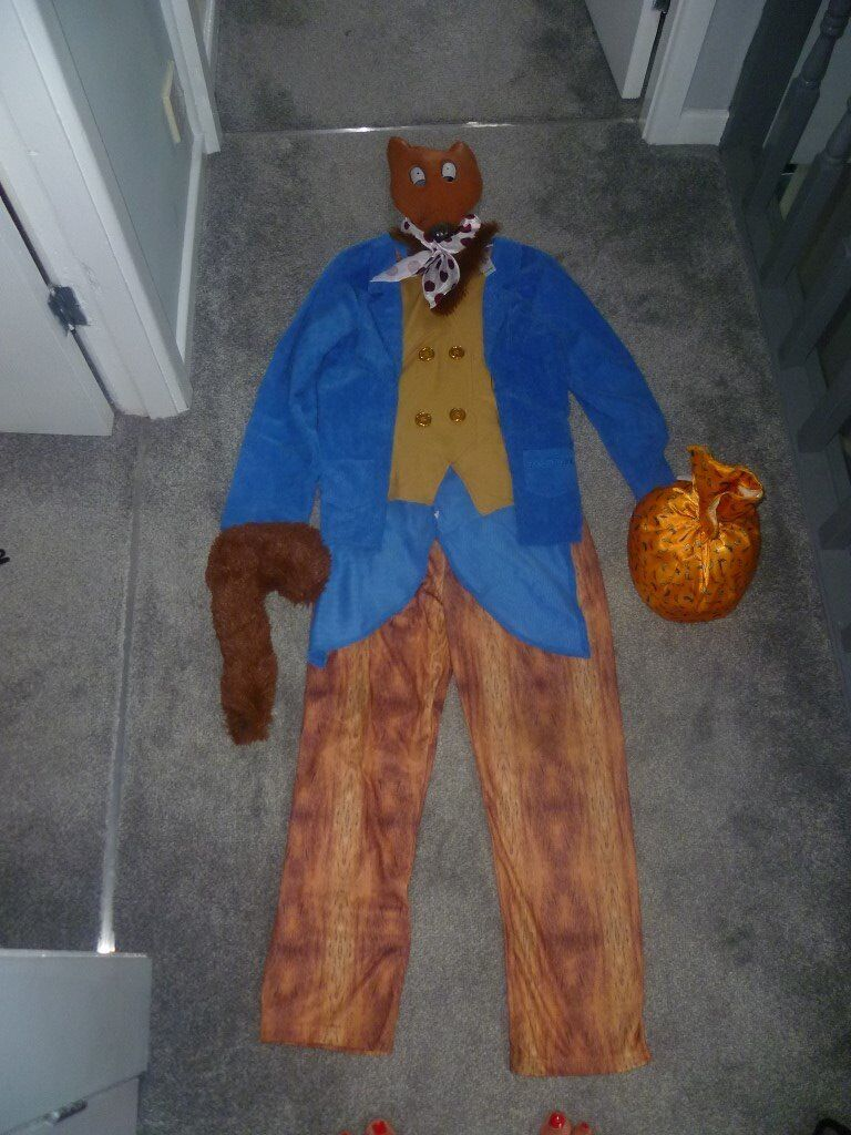 Fantastic Mr Fox Fancy Dress Costume Age 9 10 Years   In Tingley ...