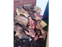 Hard wood logs £45 per ton
