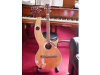 20 String Harp Guitar