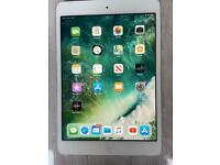 iPad mini 2 cellular Version Excellent condition