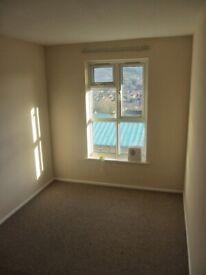 Room to rent in 3 bedroom flat