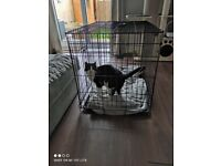 2 x large cat or dog foldable training cages