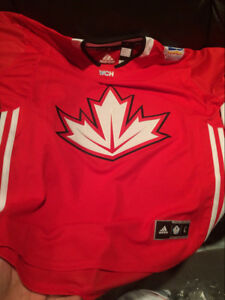 ADIDAS TEAM CANADA WORLD CUP JERSEY BLANK - LARGE