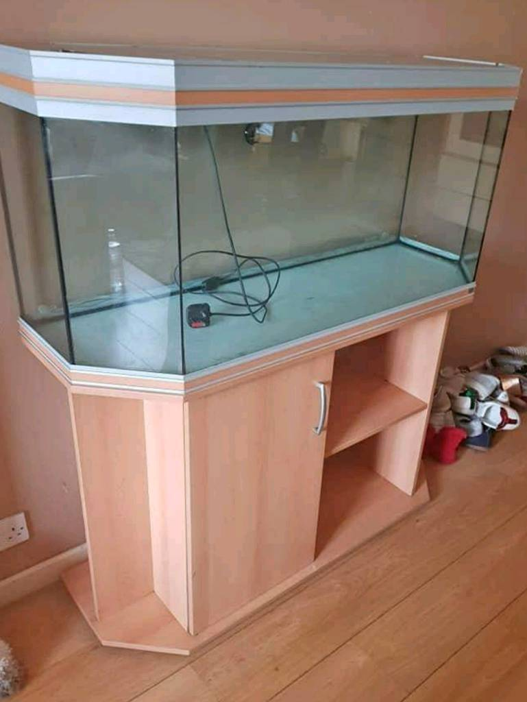 Large 4ft fish tank | in Caerphilly | Gumtree
