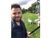 Dog walking/walker services