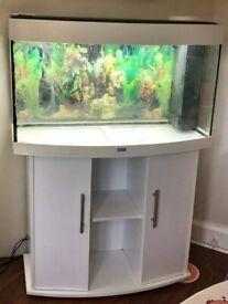 Juwel Vision 180 White marine tropical cold fish tank aquarium (delivery installation)
