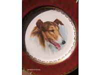 Large Vintage Wall Plat Weatherby Hanley, Collie Dog , Plate