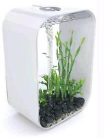 60l BiOrb life aquarium