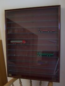 Model Cars Wall Mounted Display Cabinet