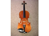 Violin by Paesold/Schroetter ( AS-165 - V4/4).