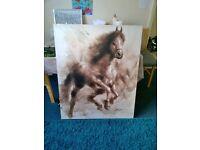 large Canvas Horse Print