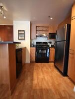 Fully furnished 1 bedroom, Luxurious building, Downtown Montrea