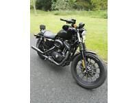 Harley Davidson Iron 2015