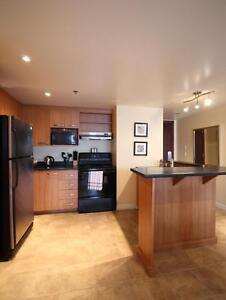 Luxuriously furnished 2 bedroom - high-end - excellent location