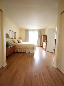 Fully furnished 2 bedroom, amazing building, downtown Montreal