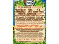 2 x adult tickets + camping + Thursday + parking Kendal calling 2018