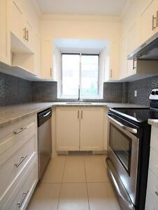 Totally renovated unit - Downtown, luxury building