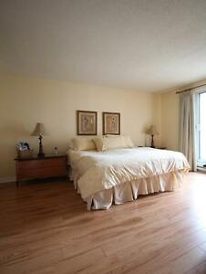 Fully furnished two bedroom, downtown Montreal, available now
