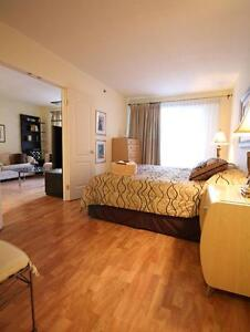 Fantastic furnished downtown luxury apartment, ++amenities++