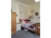 Large double bedroom available for Summer